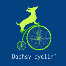 Dachsy-cyclin