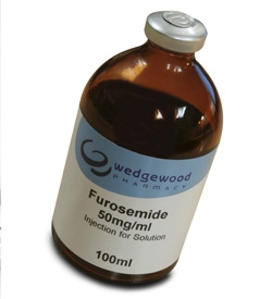 Furosemide - Injection Solution - Horses
