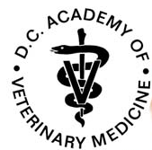 DC Academy