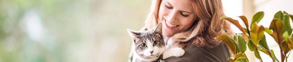 Pet Medicine for Pet and Horse Owners